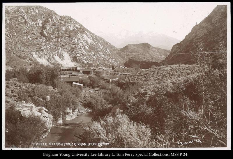 Thistle. Spanish Fork Canon, Utah, R.G.W.Ry. (Rio Grande Western Railway)